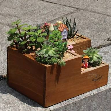 Mini corner plant Box for garden in Pakistan